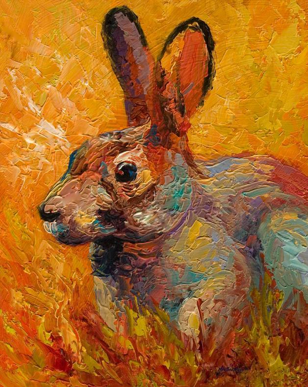 rabbit-iii-marion-rose