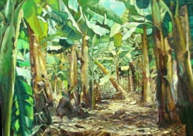 paisaje bananos