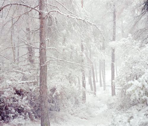paisajes-rrftt-nieve-peter-zeglis