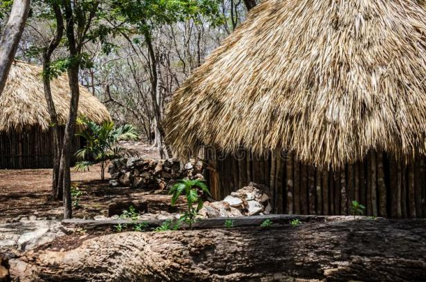 choza-maya-tradicional-en-quintana-roo-méxico-116774309